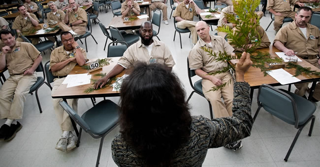Nalini Nadkarni speaks to prisoners at the Stafford gallery with more photos. Creek Correction Center in Aberdeen, Washington. (Photo by Benj and Sarah Drummond)