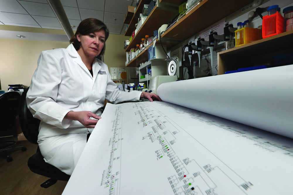 Deborah Neklason, a U research assistant professor of oncology and director of the Utah Genome Project, notes that genetic testing, paired with clinical intervention, has helped save patients' lives. (Photo by Tom Smart)