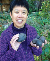 Marjorie Chan