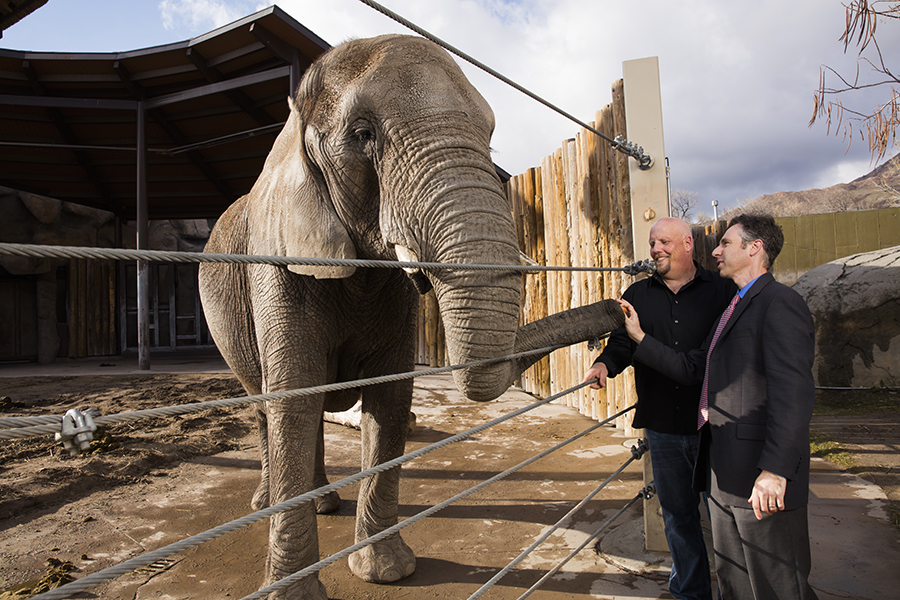 Schiffman with Eric Peterson, the elephant keeper at Hogle Zoo.